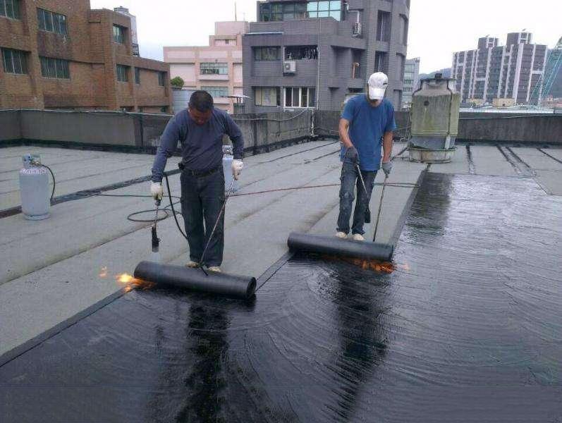 常见问题及处理方法----防水涂料施工问题